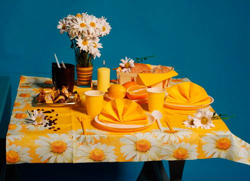 Пластиковые стаканы и тарелки радуют своим ярким и оригинальным внешним видом